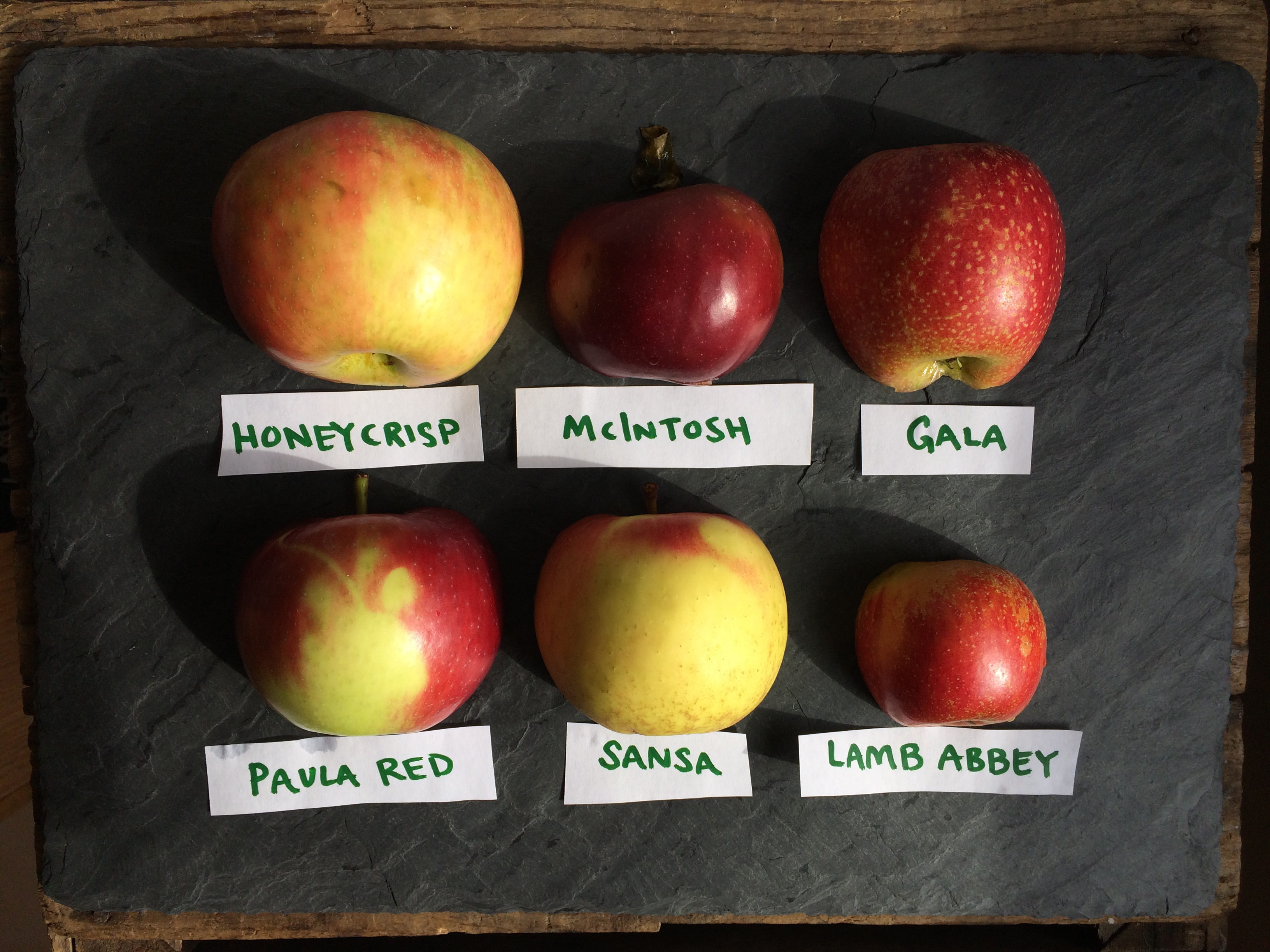 More Than A-peeling: Locally Harvested Apples